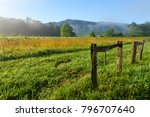 country meadow on sunny morning ...   Shutterstock . vector #796707640