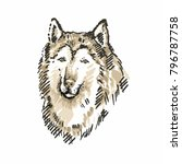 hand drawn husky. sketch ... | Shutterstock .eps vector #796787758