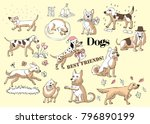 funny dogs sketches. hand... | Shutterstock . vector #796890199