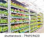 abstract blurred hardware store ... | Shutterstock . vector #796919623