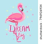 hand drawn flamingo vector... | Shutterstock .eps vector #796926934
