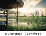 Landscape View In The...