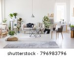 gray rug  pouf and armchair in... | Shutterstock . vector #796983796