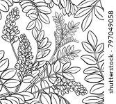 licorice seamless pattern | Shutterstock .eps vector #797049058