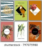 cards set with tropical leaves... | Shutterstock .eps vector #797075980