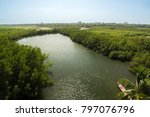 a tributary of the river gambia ... | Shutterstock . vector #797076796