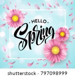 daisy flower background and... | Shutterstock .eps vector #797098999