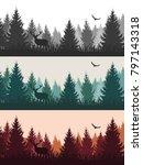 vector vintage forest landscape ... | Shutterstock .eps vector #797143318