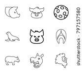 wildlife icons. set of 9... | Shutterstock .eps vector #797157580