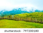 hiking near the fence border... | Shutterstock . vector #797200180