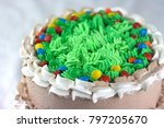 chocolate cake with green... | Shutterstock . vector #797205670