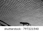 shadow of a dog walking alone... | Shutterstock . vector #797221540
