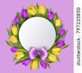 spring text with tulip flower.... | Shutterstock .eps vector #797235850