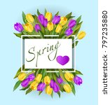 spring text with tulip flower.... | Shutterstock .eps vector #797235880