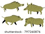 set with cute boars. vector... | Shutterstock .eps vector #797260876