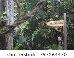 sign for forest lounge | Shutterstock . vector #797264470