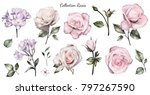 set watercolor elements of... | Shutterstock . vector #797267590
