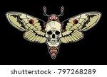 skull moth vector file   Shutterstock .eps vector #797268289