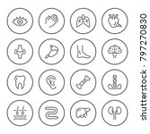 set round line icons of human... | Shutterstock .eps vector #797270830