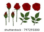 rose vector set by hand drawing.... | Shutterstock .eps vector #797293300