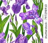 seamless pattern with iris... | Shutterstock . vector #797298910