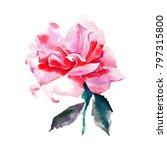 Stock photo beautiful tender gentle sophisticated wonderful lovely cute spring floral herbal botanical red 797315800