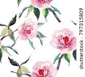 beautiful tender gentle... | Shutterstock . vector #797315809