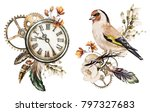 Stock photo steam punk watercolor illustration with roses clock clockwork feathers jewelry bird flowers 797327683