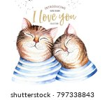 watercolor cute isolated cat... | Shutterstock . vector #797338843