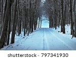 country road tunnel disappears... | Shutterstock . vector #797341930