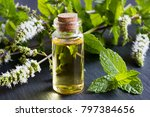 a bottle of peppermint... | Shutterstock . vector #797384656