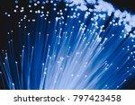detail of blue growing bunch of ... | Shutterstock . vector #797423458