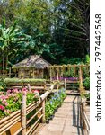 landscape of mae fah luang... | Shutterstock . vector #797442568