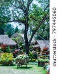 landscape of mae fah luang... | Shutterstock . vector #797443060