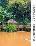 landscape of mae fah luang... | Shutterstock . vector #797443084