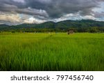 pady field season | Shutterstock . vector #797456740