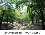 the day jungle | Shutterstock . vector #797464258
