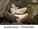 crystal deposit specimen from... | Shutterstock . vector #797465584
