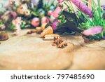flowers on wooden background... | Shutterstock . vector #797485690