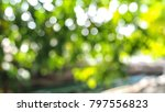 green circle bokeh in the garden | Shutterstock . vector #797556823
