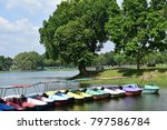 many plastic boats and many... | Shutterstock . vector #797586784
