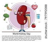 world kidney day infographic...   Shutterstock .eps vector #797592088