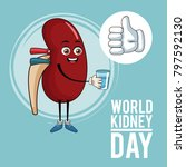 world kidney day cartoon | Shutterstock .eps vector #797592130