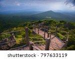 way to halla mountain  jeju... | Shutterstock . vector #797633119