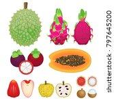 tropical fruit set custard... | Shutterstock .eps vector #797645200