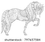 adult coloring book page a cute ... | Shutterstock .eps vector #797657584