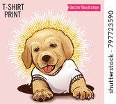 little cute golden retriever...   Shutterstock .eps vector #797723590