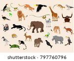 big set of exotic animals and... | Shutterstock .eps vector #797760796