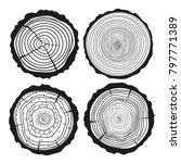 tree rings. mandala. set of... | Shutterstock . vector #797771389