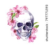 Human Skull In Pink Cherry...